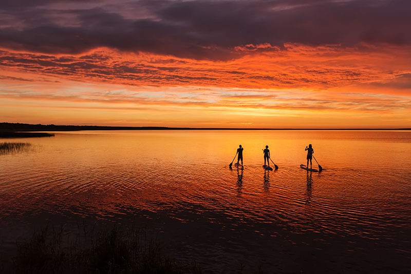 3 people paddle boarding at sunset